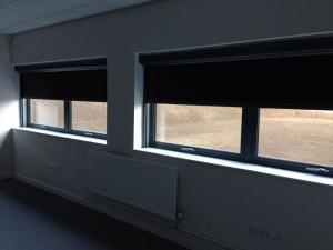 public space windows